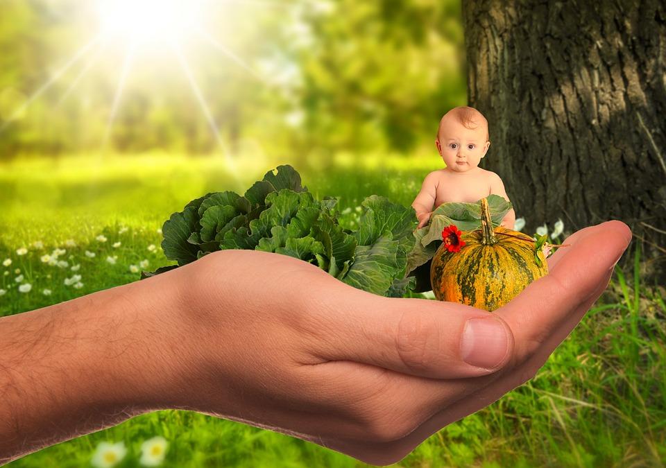 https://pixabay.com/photos/child-baby-vegetables-fruit-2002083/